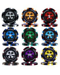 Pro poker case 300